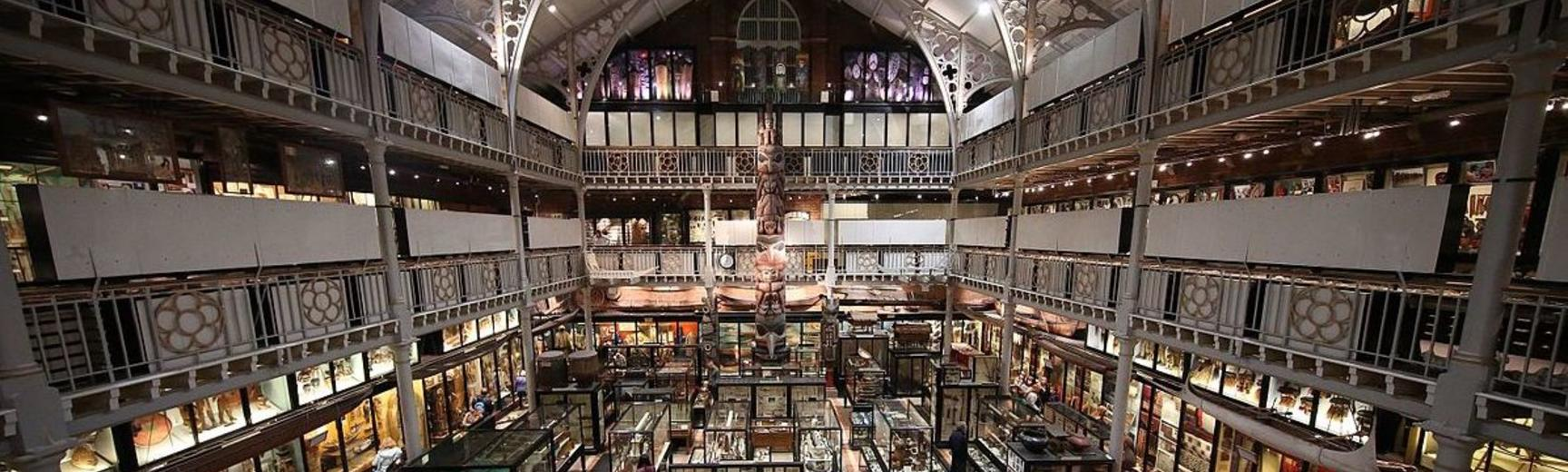 pitt rivers museum profile picture
